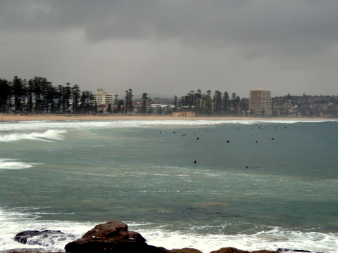 200825-Manly3